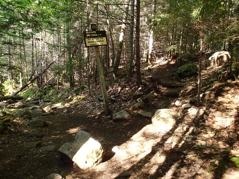 Turn off to the unmaintained trail to Street and Nye.
