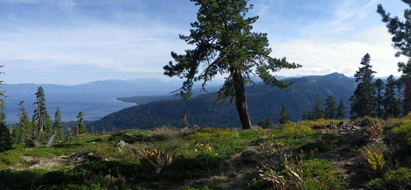 Epic views from the climb! Tahoe, South Shore, Blackwood Canyon, Rubicon Peak, Desolation Wilderness.