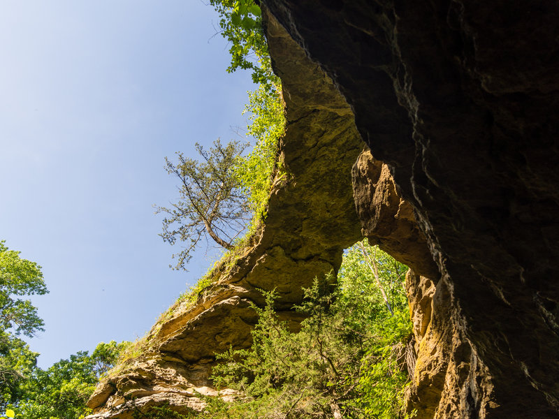The natural bridge itself.