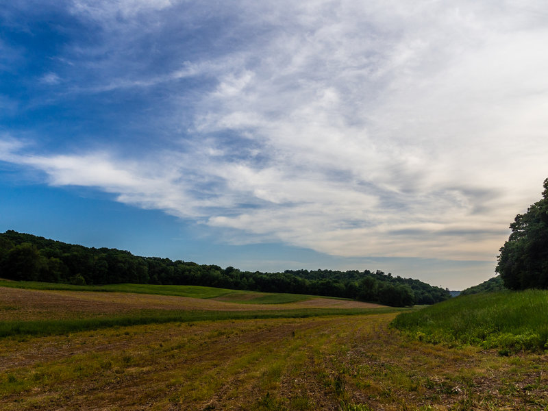 Fields and forests in Natural Bridge State Park.