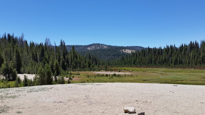 "A look across the nearby Sand Meadow - A ""Sand Dune"" in the Sierra."