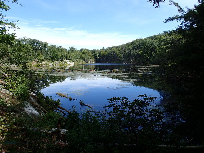 Pelton Pond
