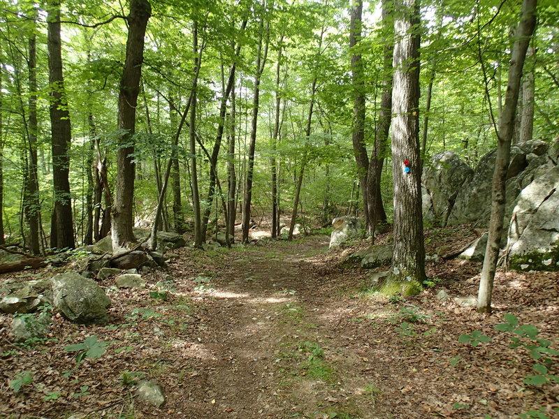 Stillwater/Pasture Loop trails