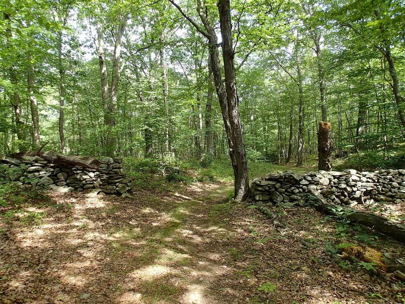 Pasture Loop Trail