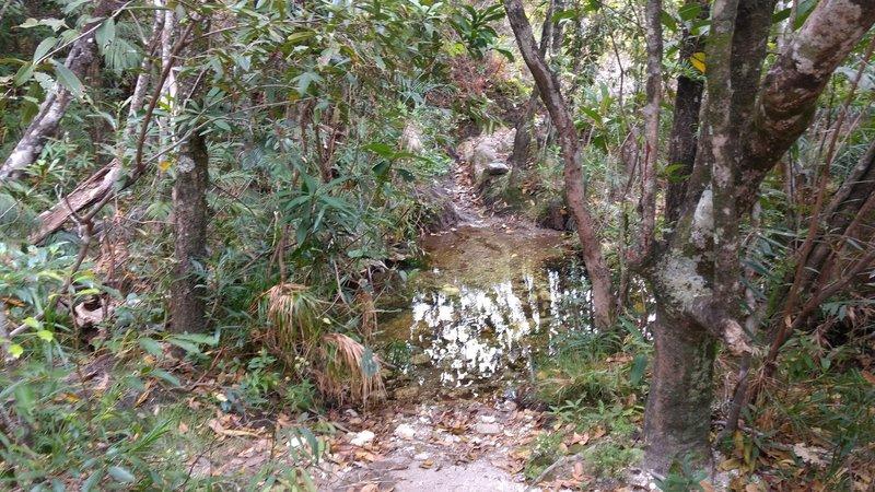 Water creek