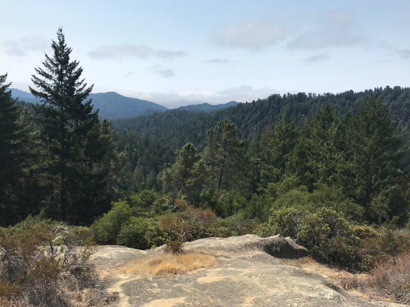 A view near the top of the Skyline to the Sea Trail.