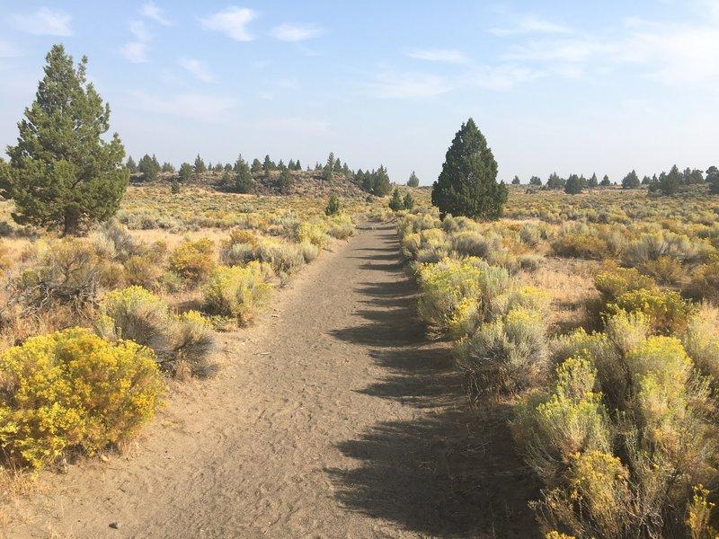 Badlands Rock Trail.