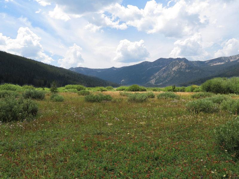 Elk Meadow from the Elk Meadows Trail.