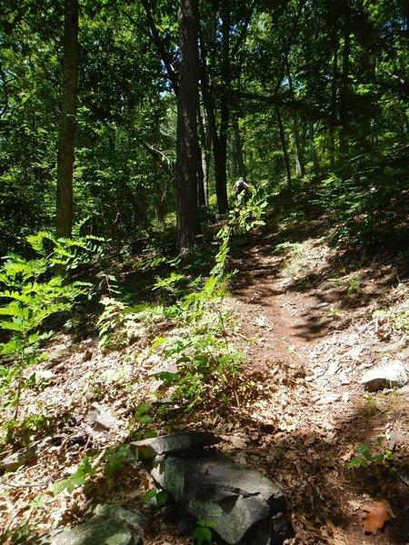 Gets steep.