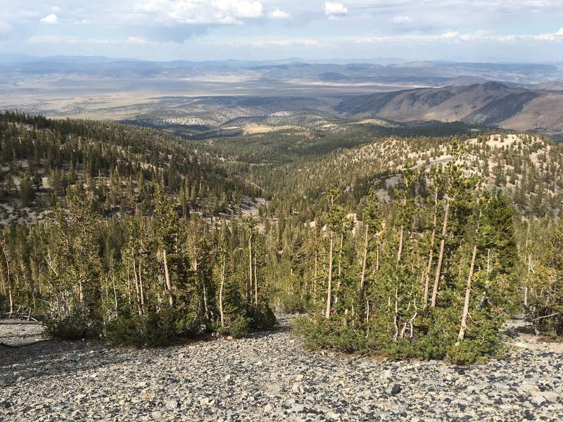 Adobe Valley from Glass Mountain Trail.