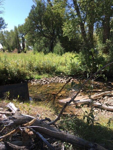 Deadman's Creek, easy to cross.