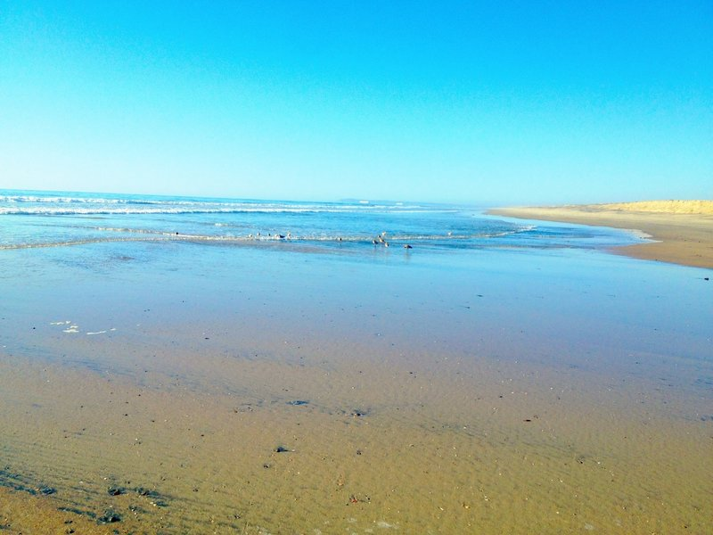 Where the Tijuana River meets the Pacific Ocean. Taken at low tide in the Fall.