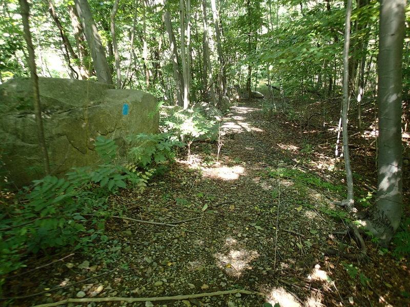 Montville-Butler Trail