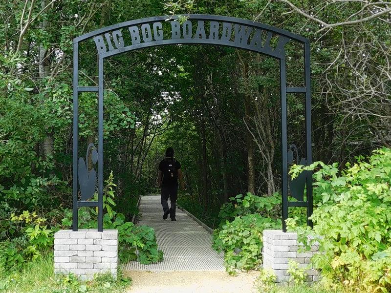 The entrance to the Big Bog Boardwalk.