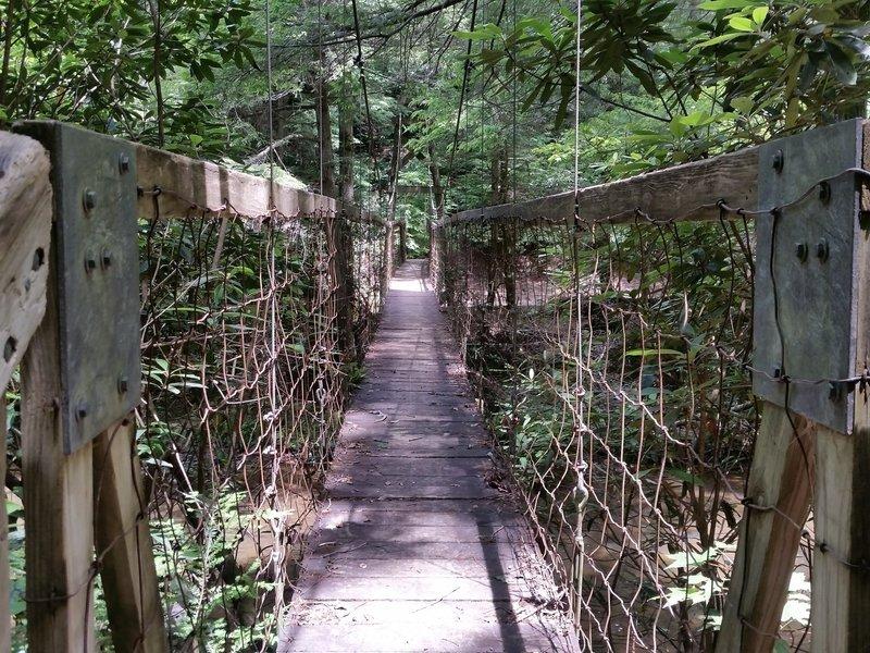 Suspension bridge over Sinking Creek.