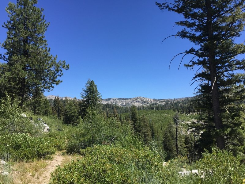 View of trail towards Blackwell Lake.