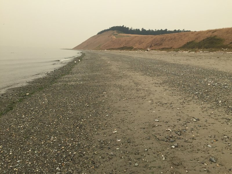 Beach along Ebey's Landing - Haze from various wildfires obscures much of the view.