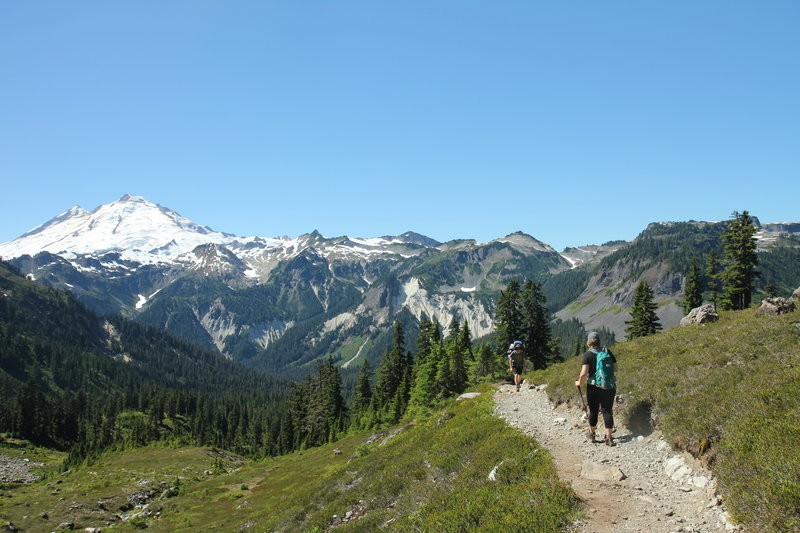 Mount Baker, meadows and trail from Lake Ann trail
