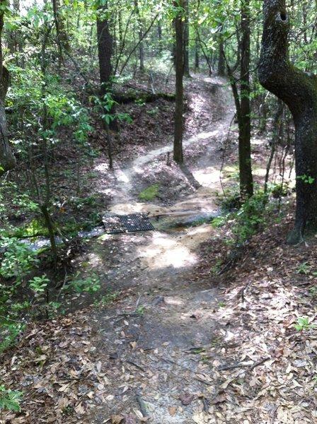 Thomson Red Trail
