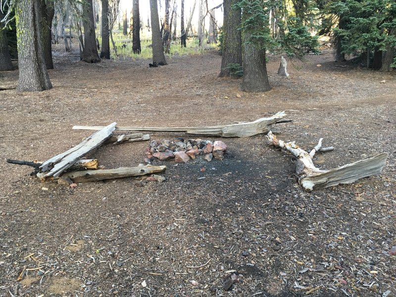 Cedar Camp