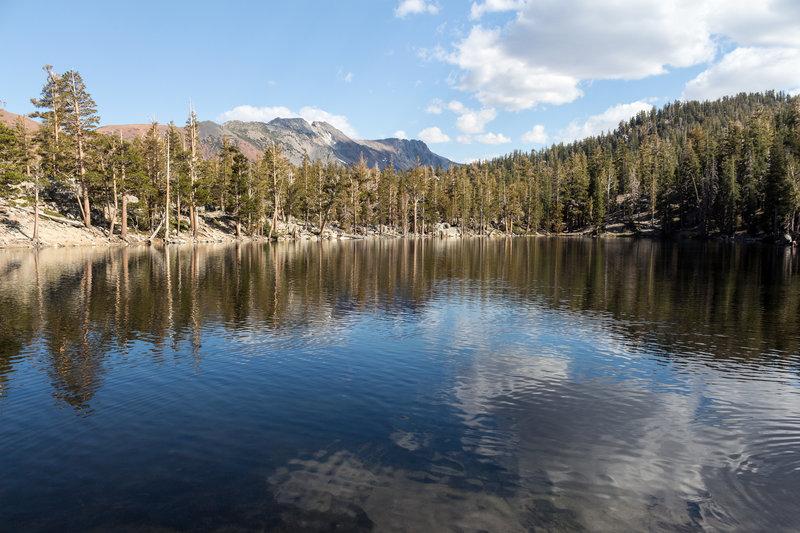Lake Barrett