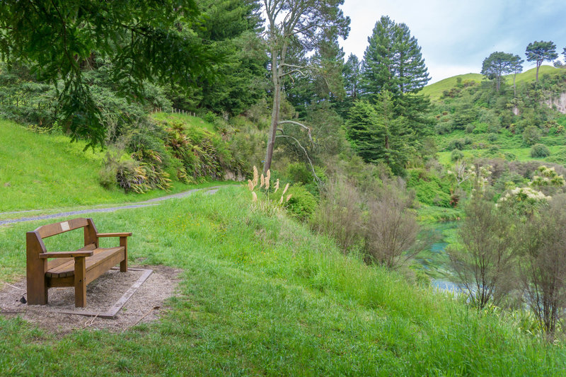 A nice rest stop along the Te Waihou Walkway