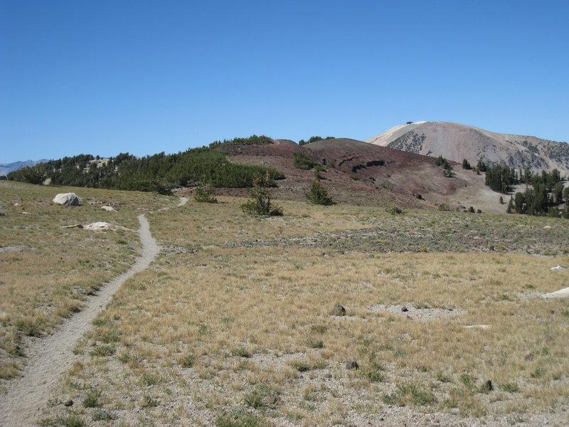 Near the Mammoth Crest Alternate Spur.