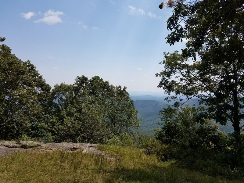 View from the shelter at the top of Bluff Ridge Primitive Trail. A welcome place to sit after an intense outing.