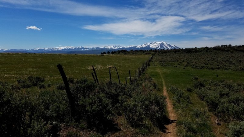 The Fisher Creek Trail is such a great off the beaten path singletrack. Sopris from the meadow