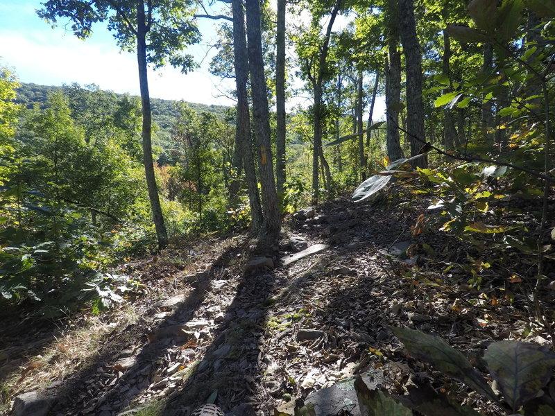 Climbing up Stephens Trail.