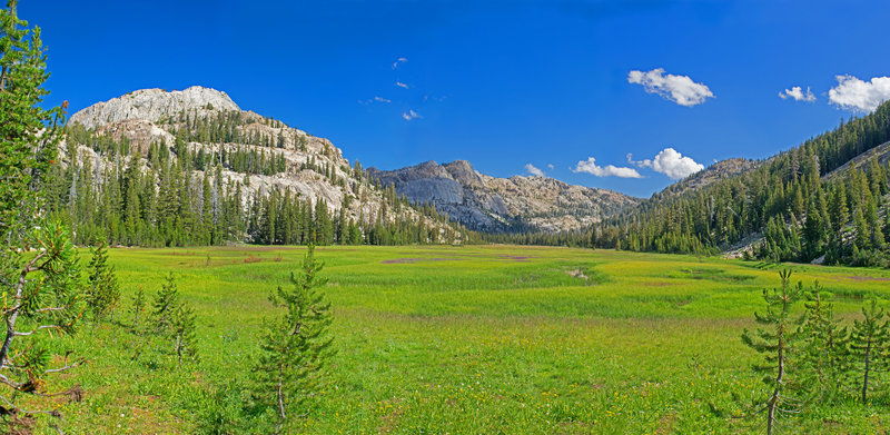 Looking up Horse Meadows from near junction with Huckleberry Trail with Grizzly Peak in the center background
