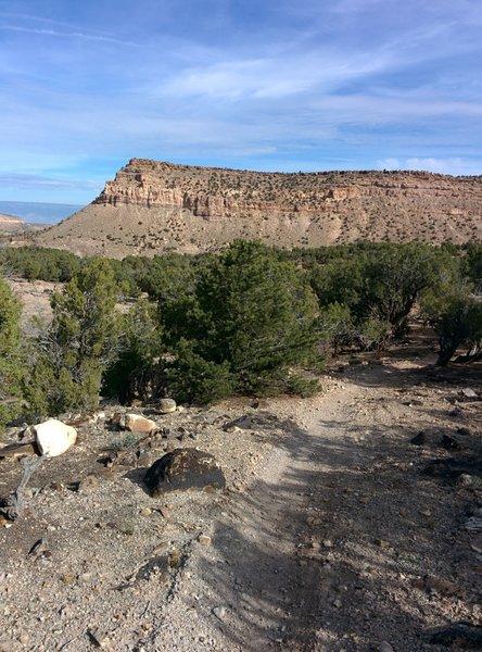 Classic desert cliffs north of Coyote Cutoff.