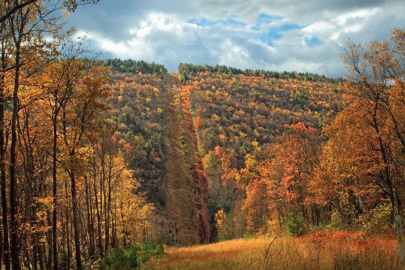 Detweiler Run Natural Area