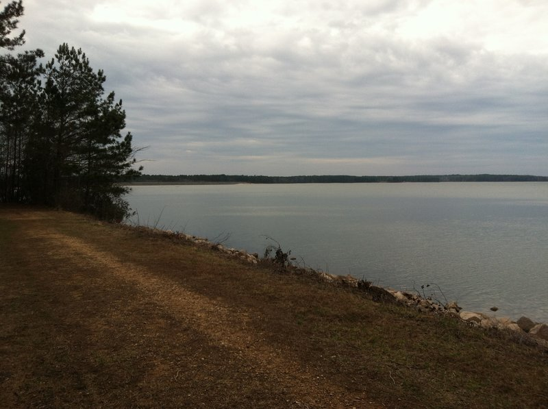 A great view of the lake from this sitting bench along the trail.