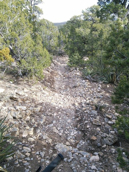 Western section is steep and loose.