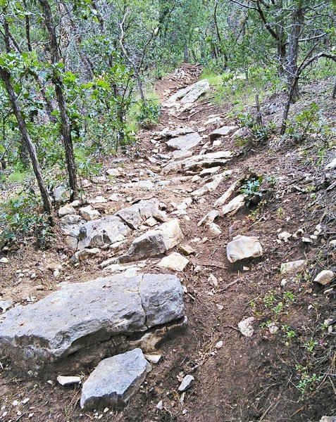 Arroyo section is steep and rough.