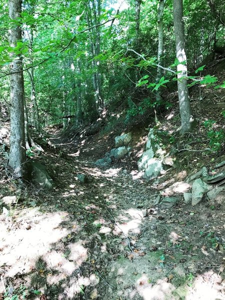 The trail rising up from the river.