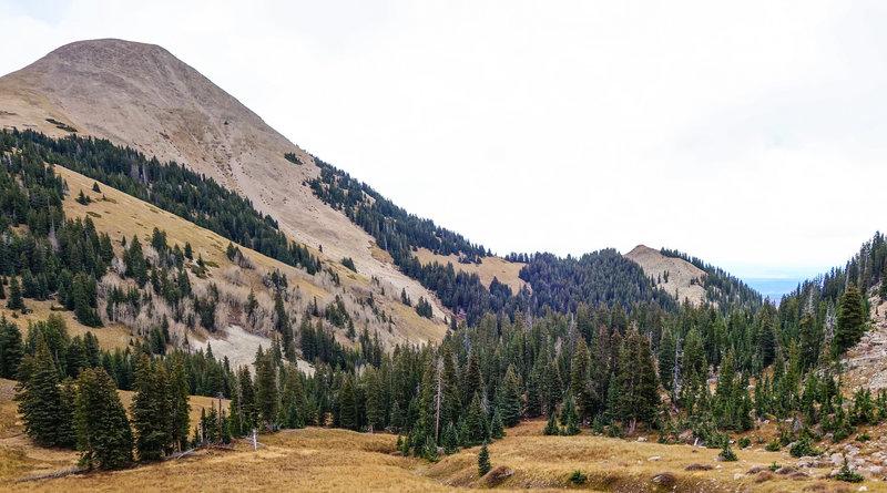 Burro Pass Trail #315.