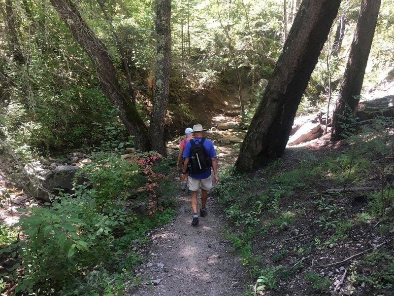 Hiking up Marshall Gulch
