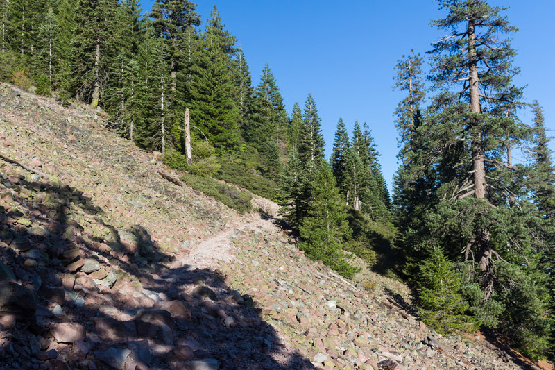 Most of the trail up Black Butte is rough and rocky.