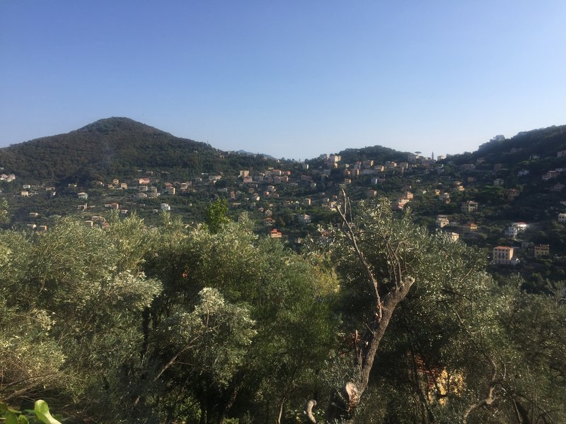 Views of the villas across the valley