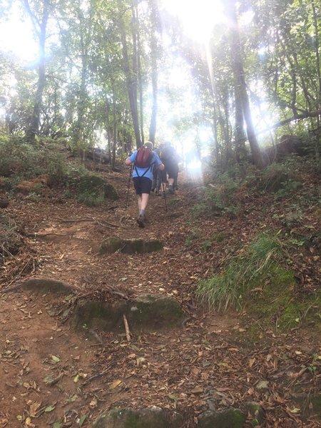 Ascending the last hill before a picnic spot.