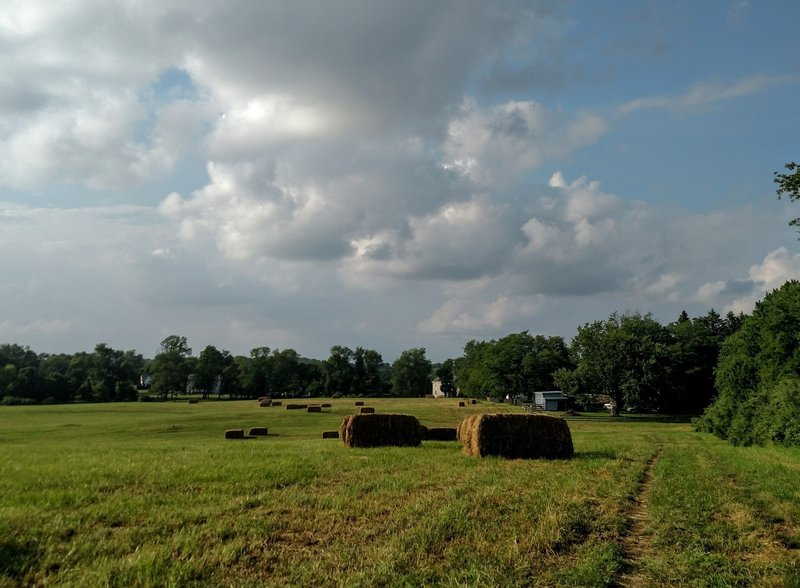 Hay bales in the late spring.