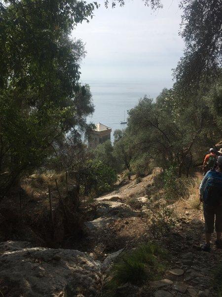 Approaching the guard tower at San Fruttuoso with a few goats grazing.