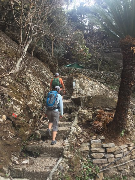Starting up the many steps up and away from San Fruttuoso