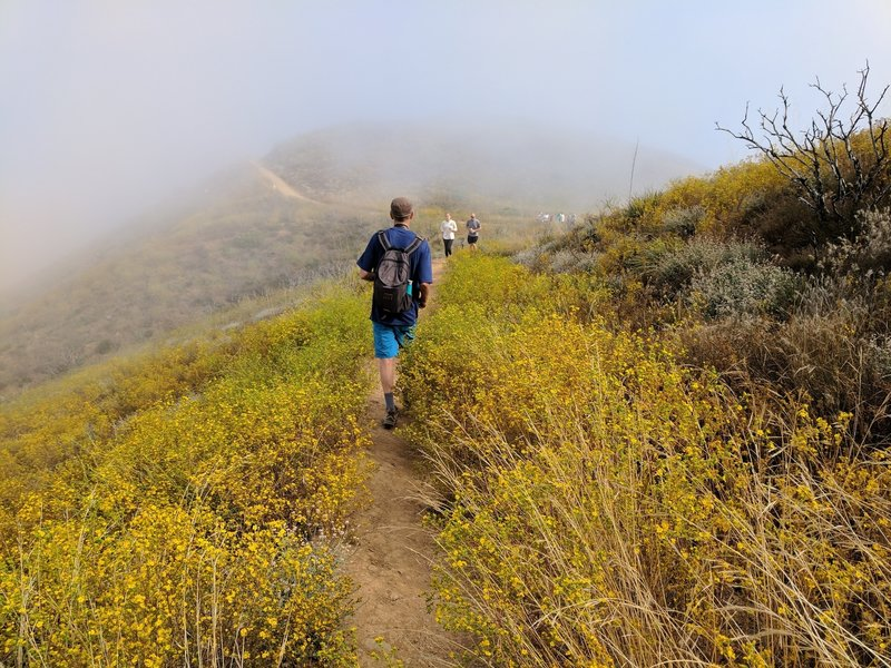 Popular trail on a July 4th.  he trails personality changed every few minutes due to the patchy low clouds.