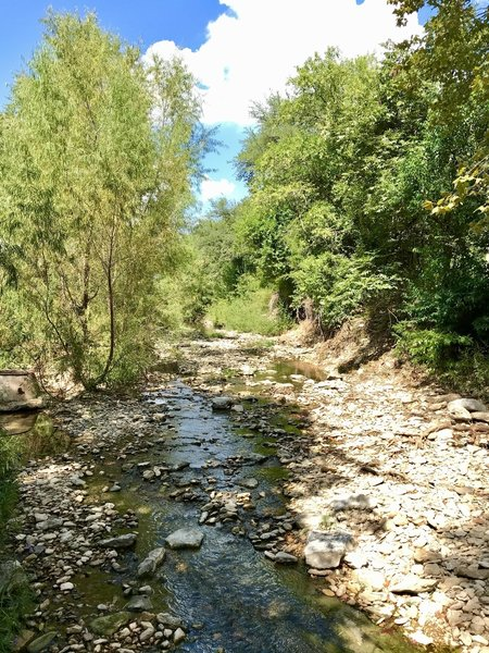Lower Shoal Creek Trail....half a block from the downtown Austin REI store!