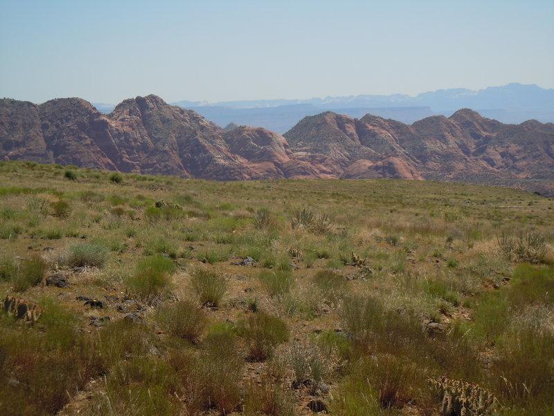 From Broken Mesa Trail.