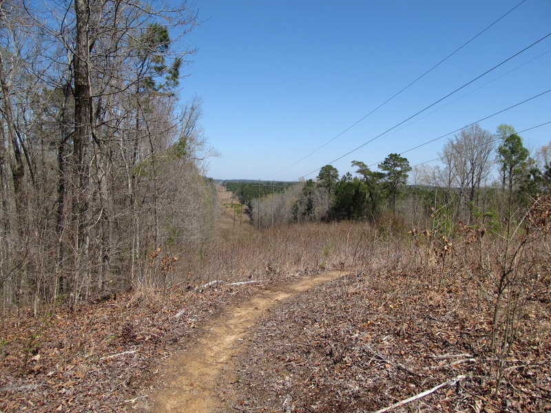 The Power Line Trail, turning back under the power lines before the downhill descent into the woods