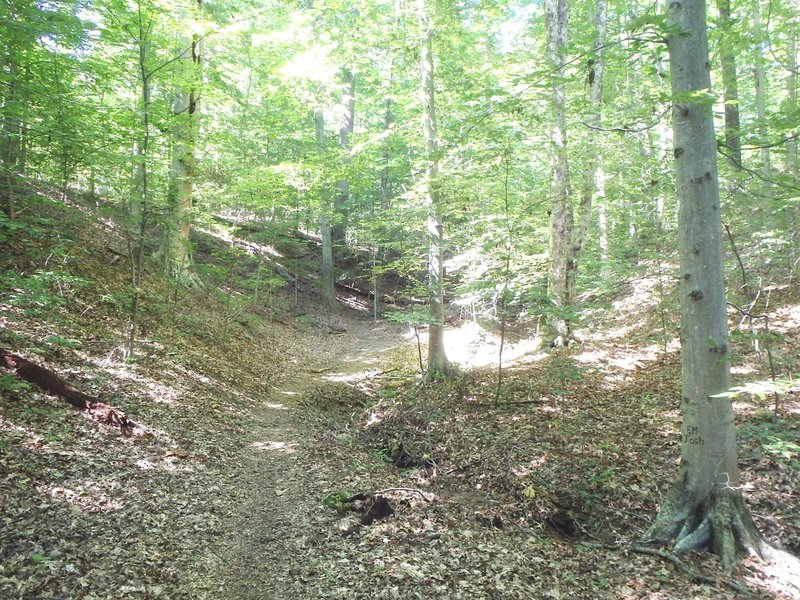 The Lake Hope, Peninsula Trail, in Vinton County Ohio has some considerable uphill climb.
